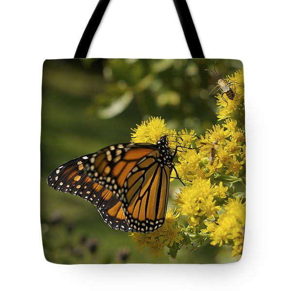 Wings - Monarch On Goldenrod Tote Bag by Jane Eleanor Nicholas