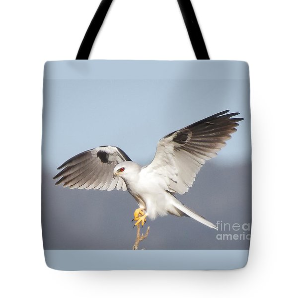 Wingspan Tote Bag by Alice Cahill