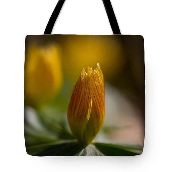 Winter Aconite Tote Bag by Andreas Levi