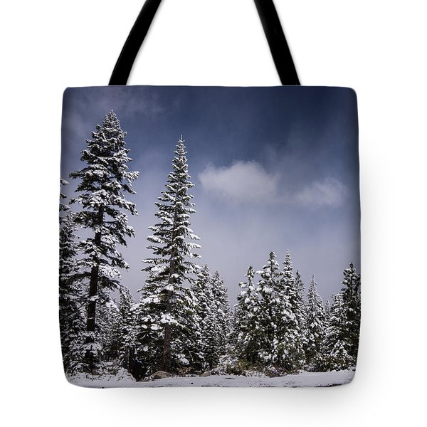 Tote Bag featuring the photograph Winter Again by Janis Knight