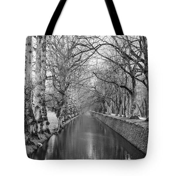 Winter Tote Bag by Alex Lapidus