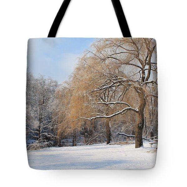 Winter Along The River Tote Bag by Nina Silver
