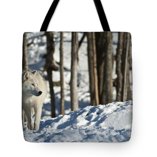 Tote Bag featuring the photograph Winter Arctic Wolf by Wolves Only