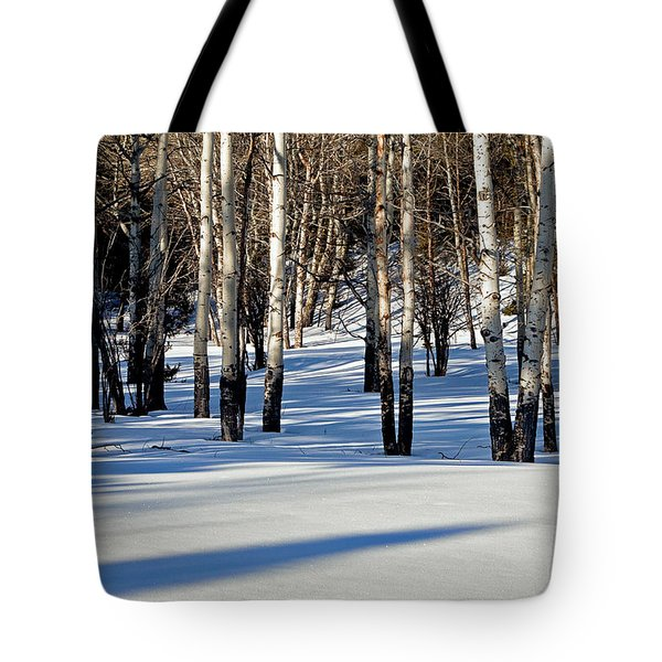 Tote Bag featuring the photograph Winter Aspens by Jack Bell