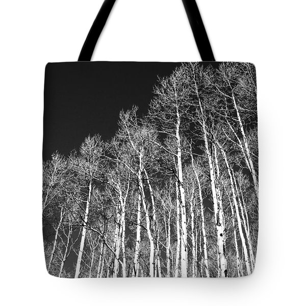 Tote Bag featuring the photograph Winter Aspens by Roselynne Broussard