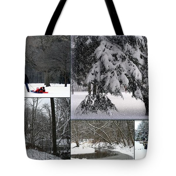 Tote Bag featuring the photograph Winter At Petrifying Springs Park by Kay Novy