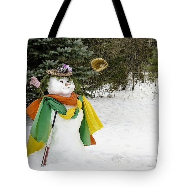 Winter Baseball Ball Gown  Tote Bag by LeeAnn McLaneGoetz McLaneGoetzStudioLLCcom