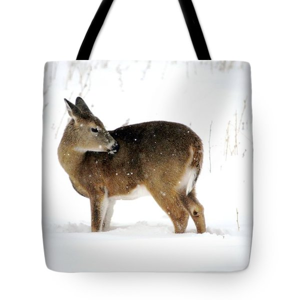 Tote Bag featuring the photograph Winter Bath Time by Dacia Doroff
