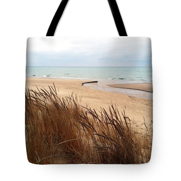 Winter Beach At Pier Cove Tote Bag