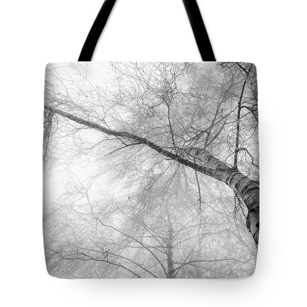 Winter Birch - Bw Tote Bag by Hannes Cmarits