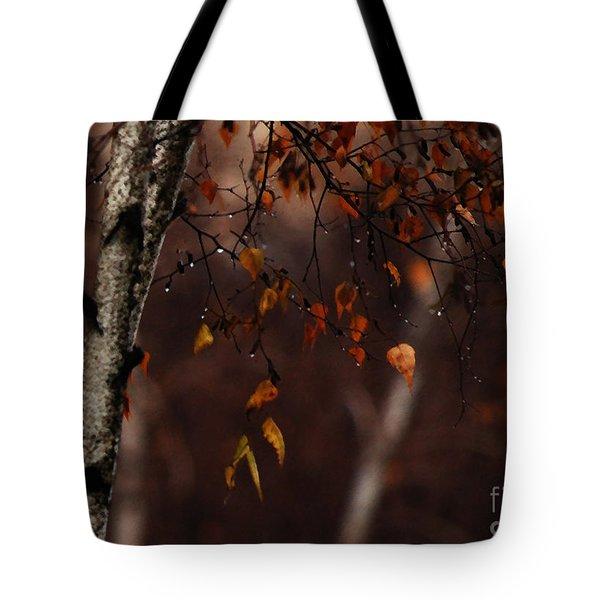 Winter Birch Tote Bag by Linda Shafer