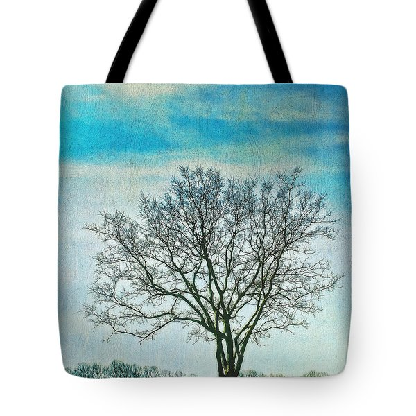 Tote Bag featuring the photograph Winter Blues by Gary Slawsky