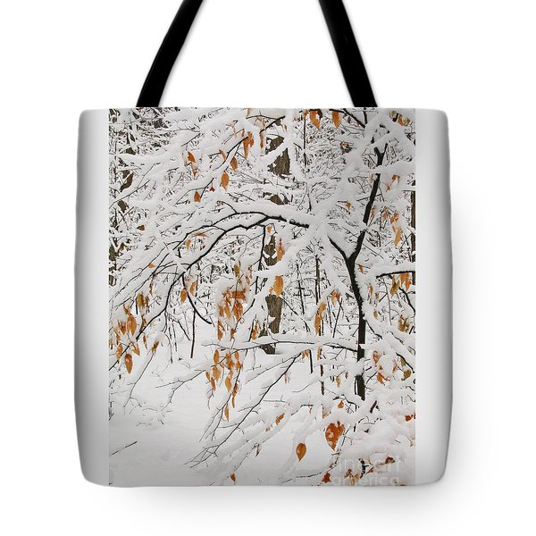 Tote Bag featuring the photograph Winter Branches by Ann Horn