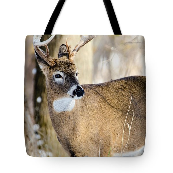 Winter Buck Tote Bag