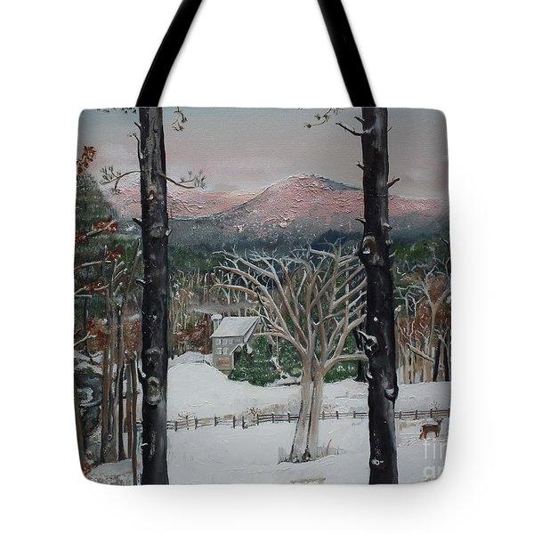 Winter - Cabin - Pink Knob Tote Bag