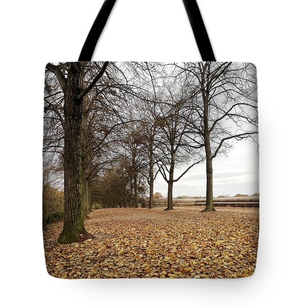 Winter Calling Tote Bag