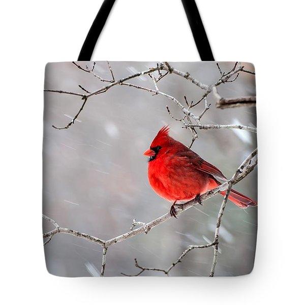 Winter Cardinal Tote Bag by Debbie Green