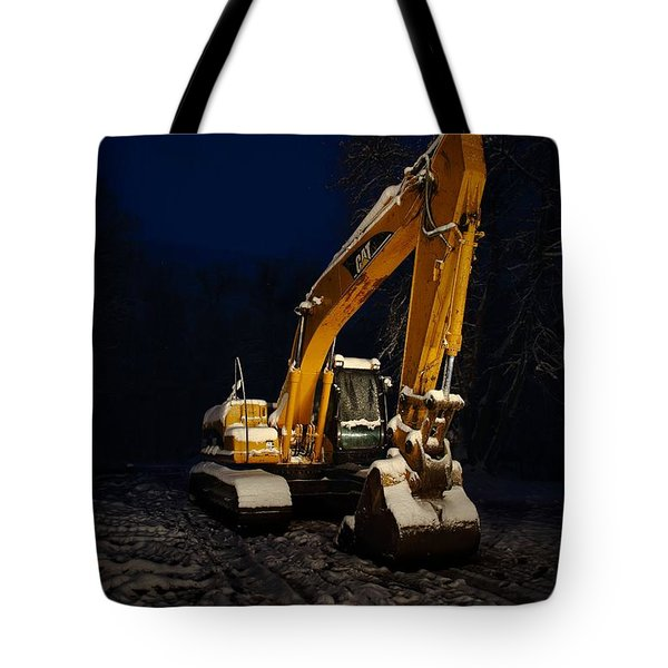 Winter Cat Tote Bag by David Andersen