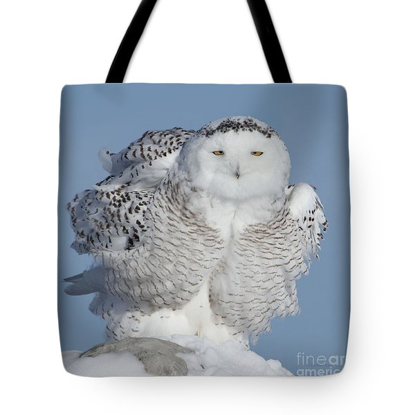 Winter Coat Tote Bag by Heather King