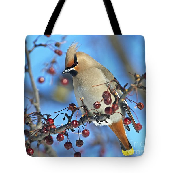 Winter Colors.. Tote Bag by Nina Stavlund