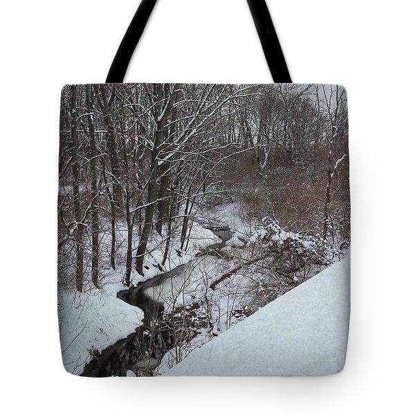 Winter Creek Tote Bag by Scott Kingery