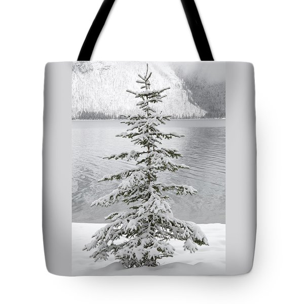 Winter Decor Tote Bag by Diane Bohna
