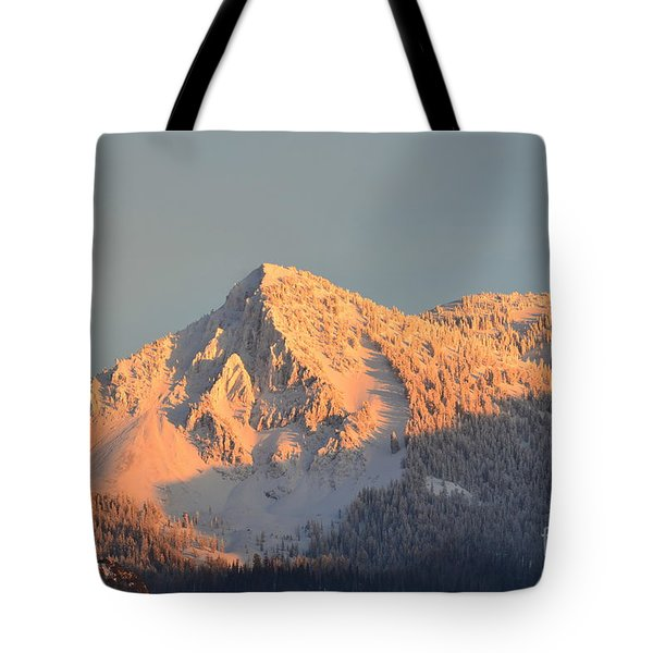 Tote Bag featuring the photograph Winter by Dorrene BrownButterfield