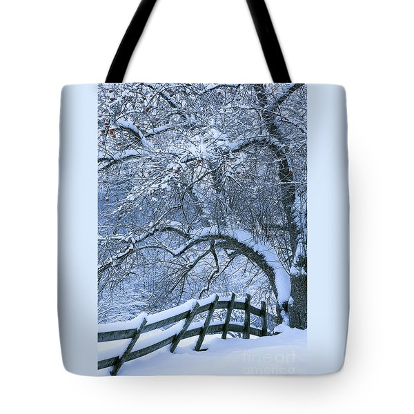 Winter Fence Tote Bag by Alan L Graham