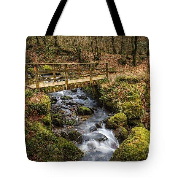 Winter Footbridge Tote Bag by Adrian Evans