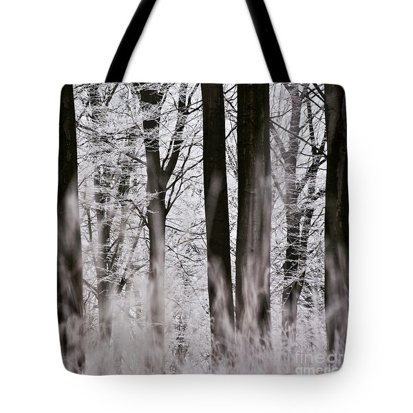 Winter Forest 1 Tote Bag by Heiko Koehrer-Wagner