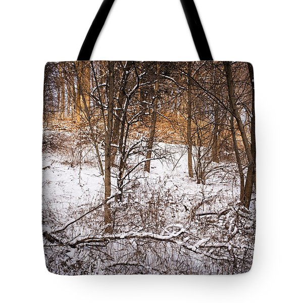 Winter Forest Tote Bag by Elena Elisseeva