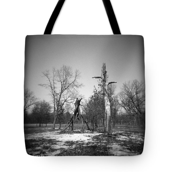 Winter Forest Series 4 Tote Bag