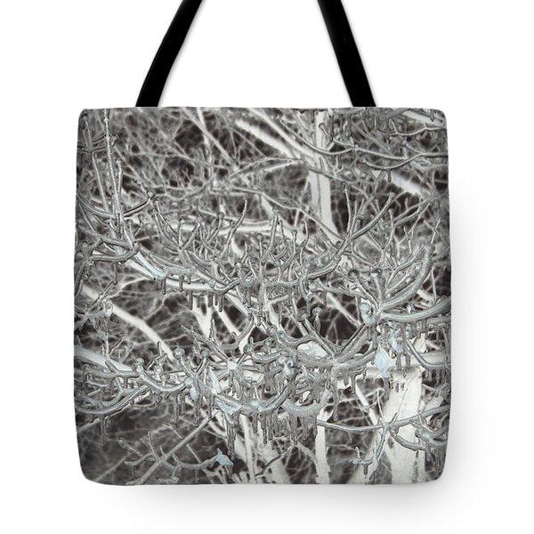 Winter Freeze Tote Bag by Arlene Carmel