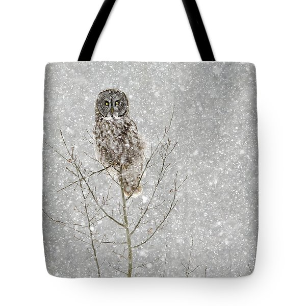 Winter Ghost Tote Bag