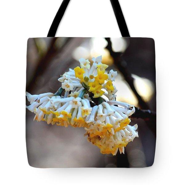 Winter Gold Tote Bag by Maria Urso