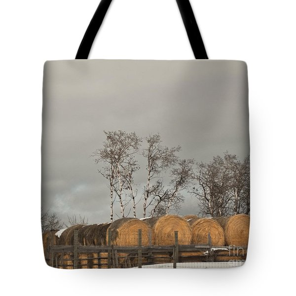 Tote Bag featuring the photograph Winter Gold by Sandi Mikuse