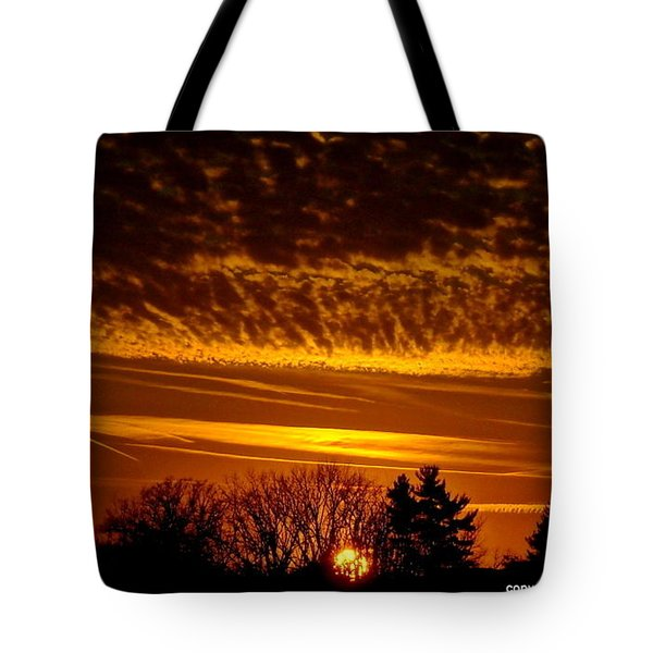 Winter Gold Tote Bag