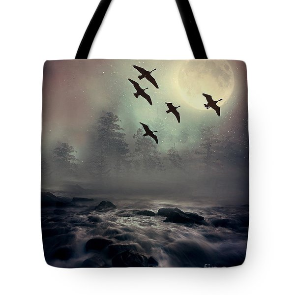 Winter Golden Hour Tote Bag by Andrea Kollo