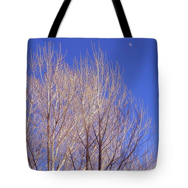 Winter High Node Tote Bag