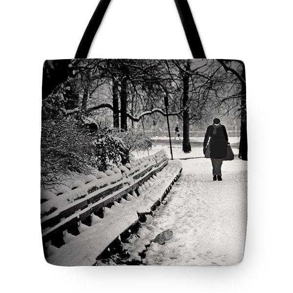 Winter In Central Park Tote Bag by Madeline Ellis