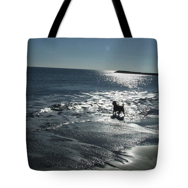 winter in Les Ste Marie de la mer Tote Bag