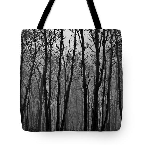 Winter In Pennsylvania Tote Bag by Benjamin Yeager