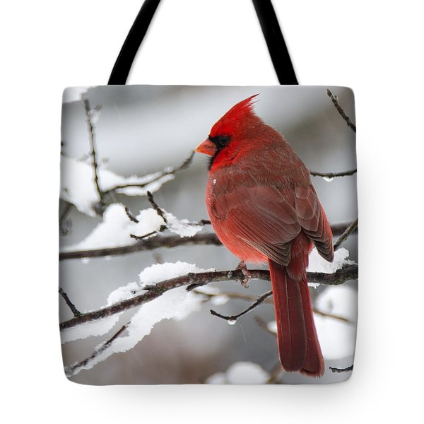 Winter In Red Tote Bag