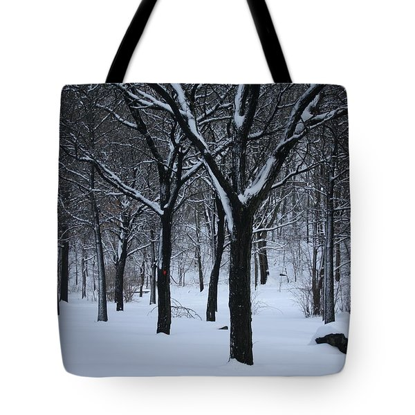 Tote Bag featuring the photograph Winter In The Park by Dora Sofia Caputo Photographic Art and Design
