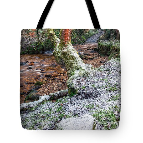 Winter In The Woods Tote Bag by Adrian Evans