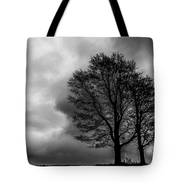 Winter Is Here Tote Bag by Tim Buisman