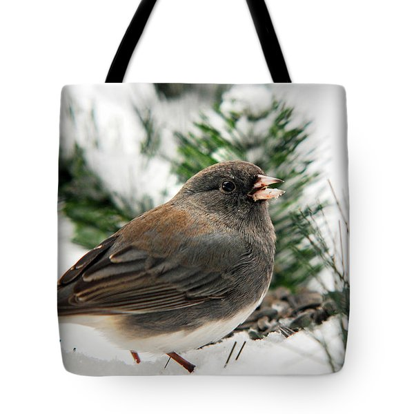 Winter Junco Tote Bag by Christina Rollo