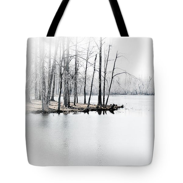 Tote Bag featuring the photograph Winter Lake by Greg Jackson