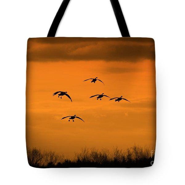 Winter Landing No.2 Tote Bag by Neal Eslinger