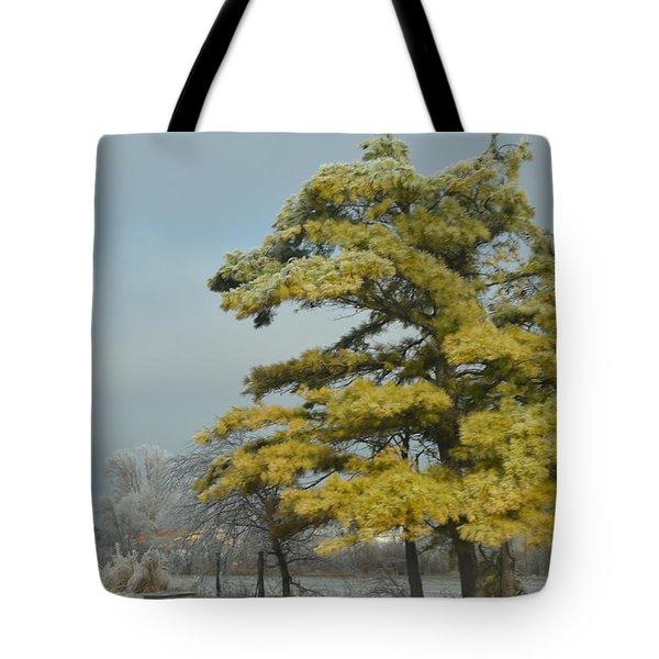 Tote Bag featuring the photograph Winter Landscape by Debra Martz